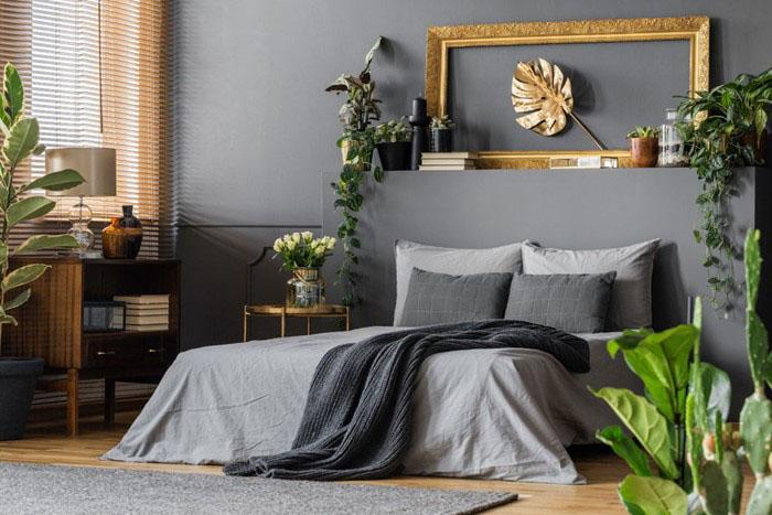 Trang trí phòng ngủ bằng cách trồng các chậu cây trong phòng