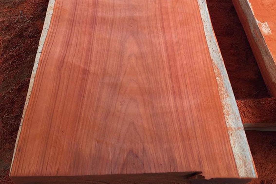 Bề mặt của gỗ Hương vân màu sắc bóng mịnh đường vân đều đẹp