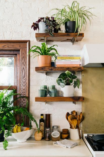 Trang trí phòng bếp với nhiều cây xanh