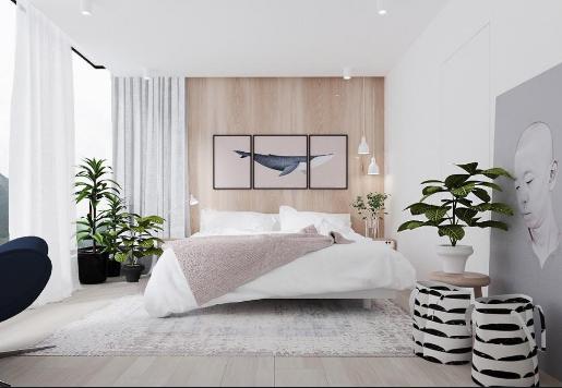 cây phong thủy trồng trong phòng ngủ