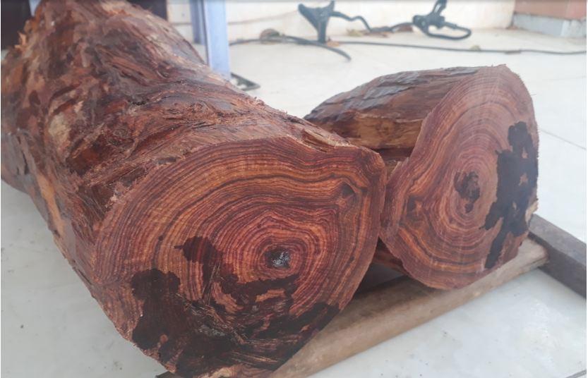 Cách phân biệt giữ gỗ Cẩm Lai và gỗ Hương cùng với gỗ Sưa