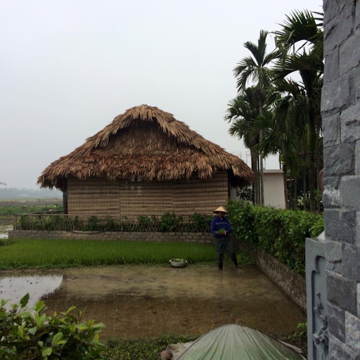 Mẫu nhà lá truyền thống được làm từ lá cọ
