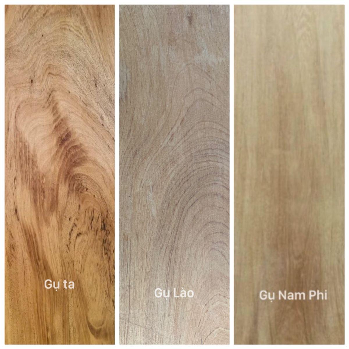 Phân biệt gỗ các loại gỗ gụ