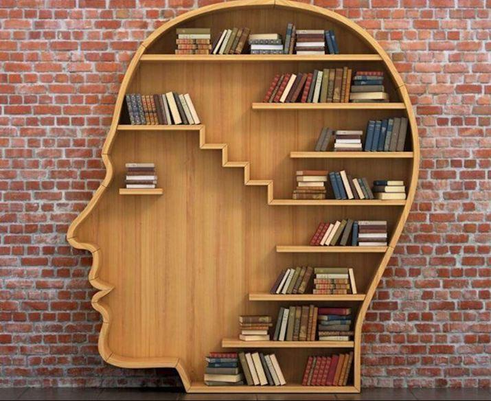 Mẫu tủ sách vừa mới lạ vừa quen thuộc giúp tăng trí tò mò sáng tạo