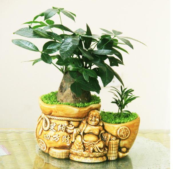 Cây Kim Ngân được sử dụng khá phổ biến trong trang trí phòng thờ