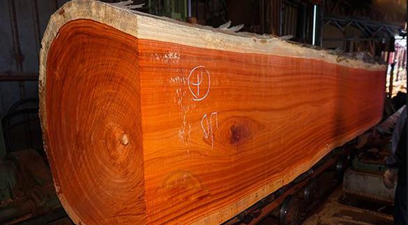 Vân gỗ chính là đường nét tự nhiên