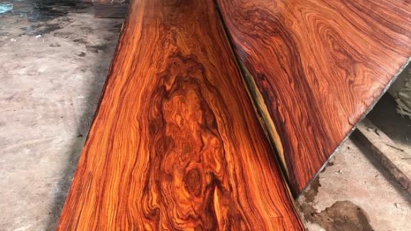 Vân gỗ có vẻ đẹp đa dạng