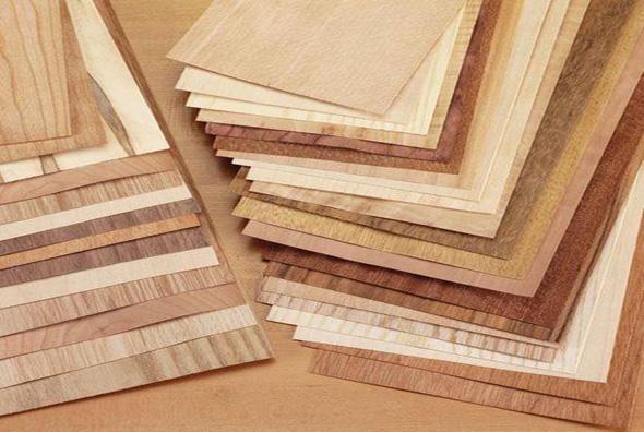 Veneer là những tấm gỗ được lạng mỏng từ cây gỗ tự nhiên
